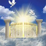 DGS DHINAKARAN 12 | HEAVEN VISITATIONS 12