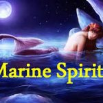 23 Attributes of Marine Spirit Spouse